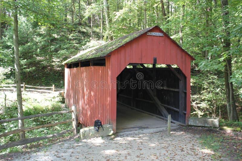 Puente cubierto del banco del pino en el rockshelter de Meadowcroft fotografía de archivo libre de regalías