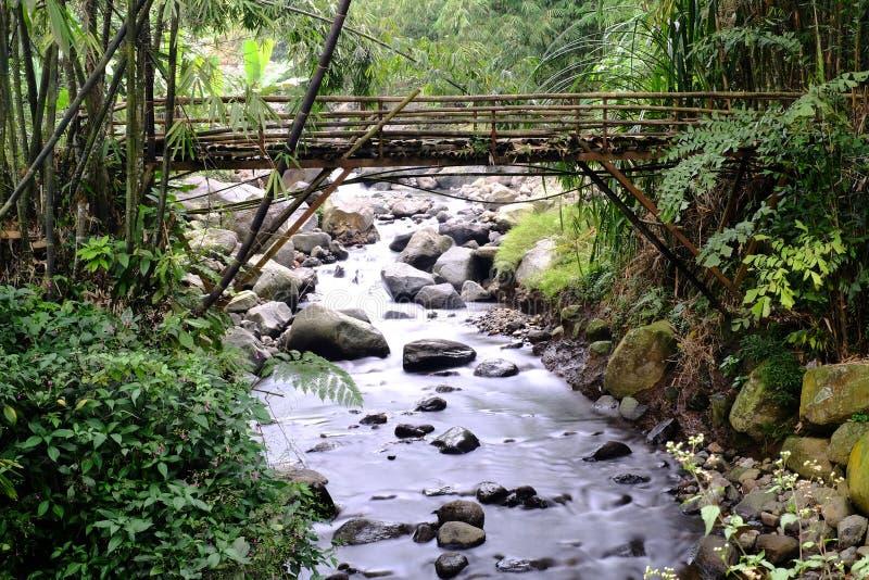 Puente de bambú en Indonesia foto de archivo