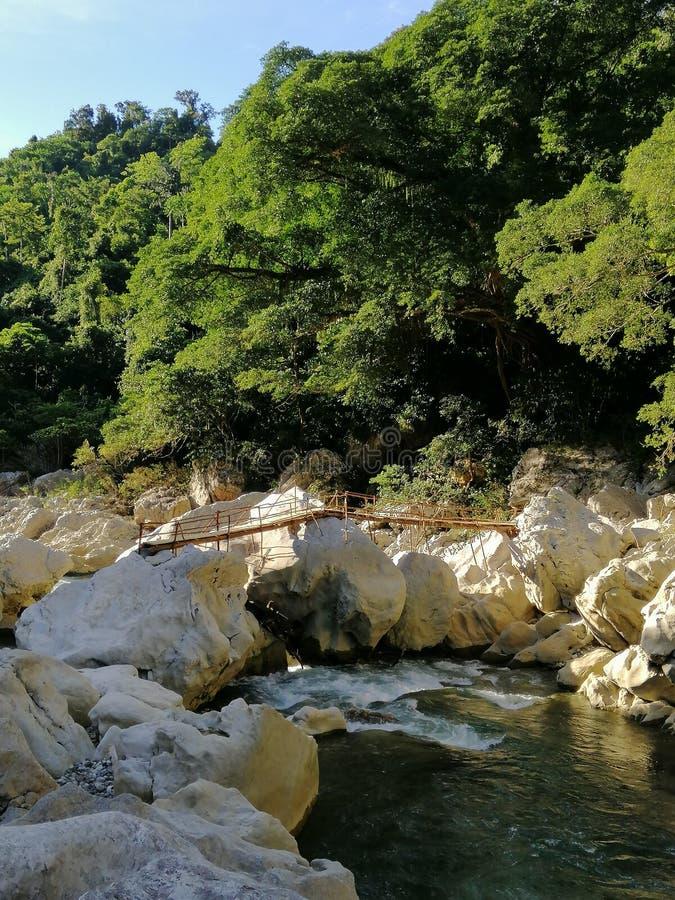 Puente de bambú inacabado imágenes de archivo libres de regalías