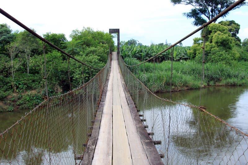 Puente de cable de acero en el río imagen de archivo