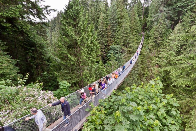 Puente de Capilano en Vancouver imagen de archivo libre de regalías