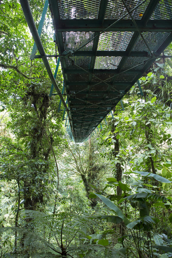 Puente de colgante Costa Rica imagenes de archivo
