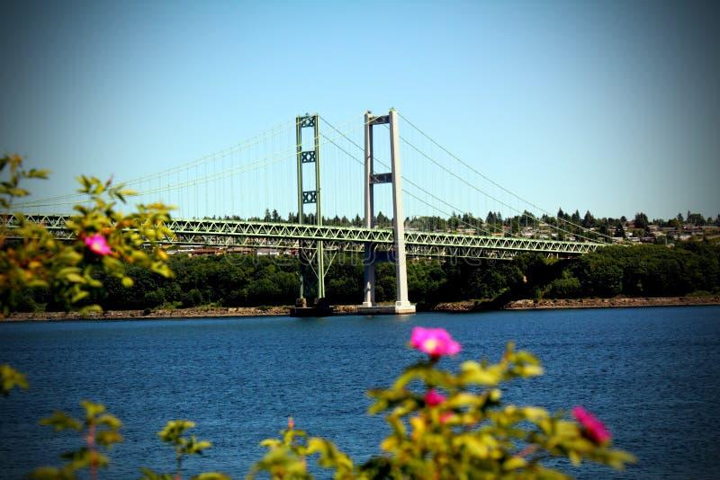 Puente de estrechos de Tacoma fotografía de archivo libre de regalías