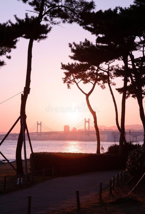 Puente de Gwangan contra la puesta del sol en el distrito de Haeundae, Busán, S foto de archivo