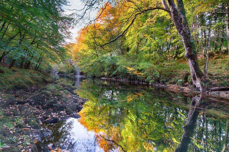 Puente de Holne en Dartmoor foto de archivo libre de regalías