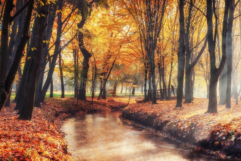 Puente de la manera del paseo sobre el río con los árboles coloridos en otoño fotografía de archivo