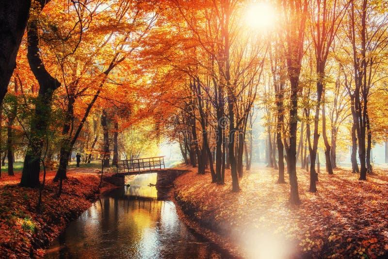 Puente de la manera del paseo sobre el río con los árboles coloridos en otoño imagenes de archivo