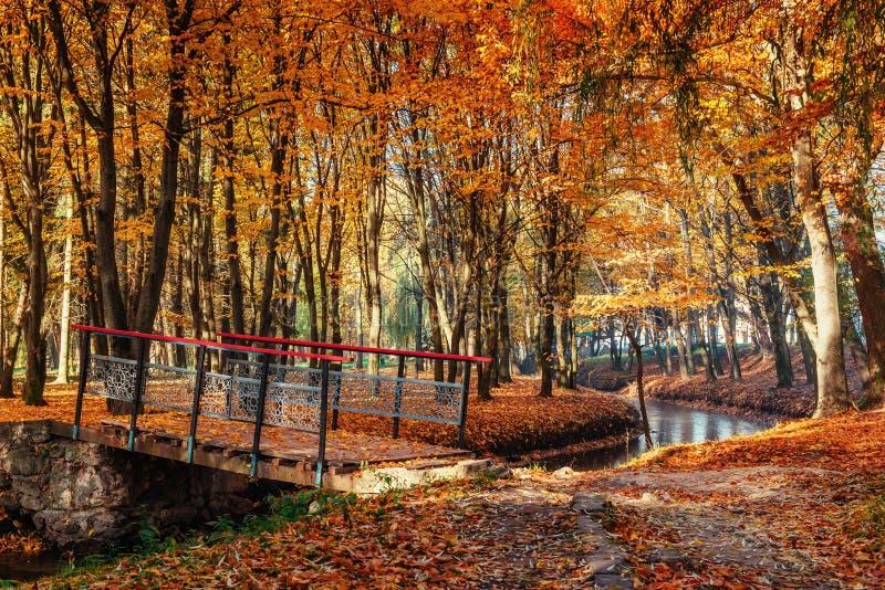 Puente de la manera del paseo sobre el río con los árboles coloridos en tiempo del otoño imagen de archivo