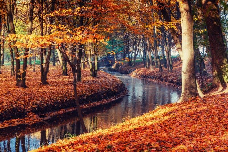 Puente de la manera del paseo sobre el río con los árboles coloridos en tiempo del otoño foto de archivo