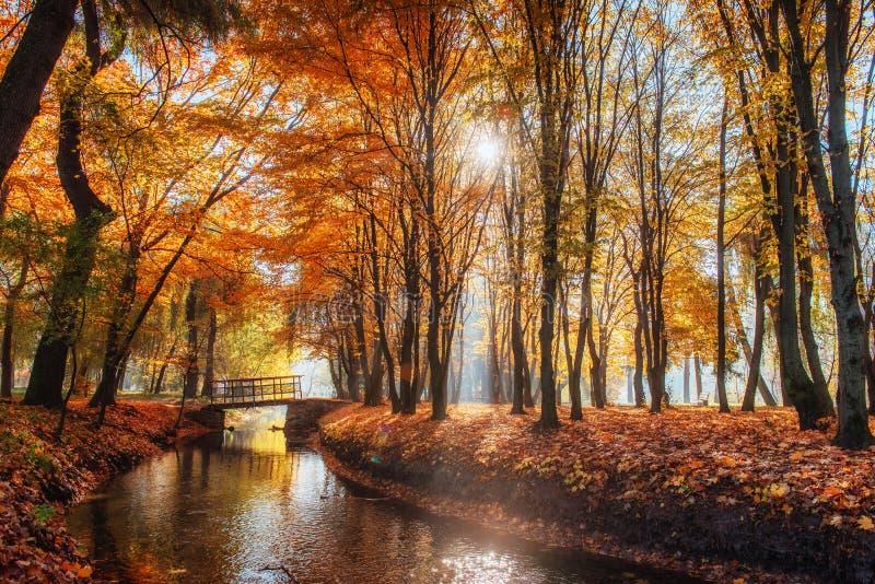 Puente de la manera del paseo sobre el río con los árboles coloridos en tiempo del otoño imagen de archivo libre de regalías
