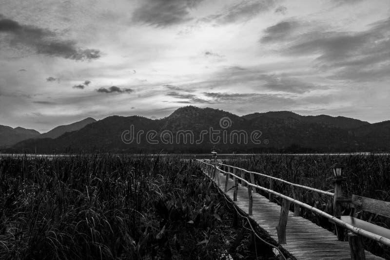 Puente de la montaña y de madera fotos de archivo libres de regalías