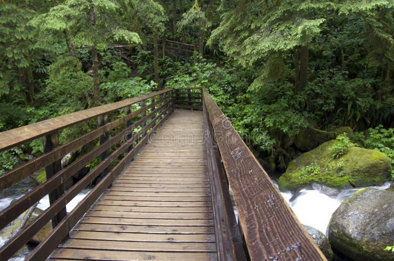 Puente de la trayectoria de bosque imagen de archivo
