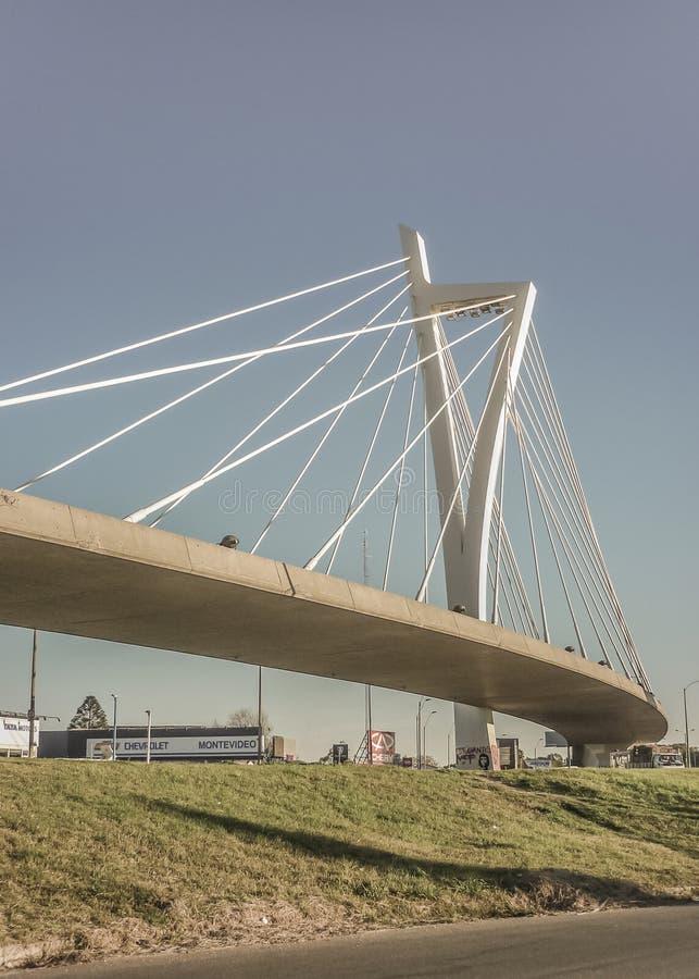 Puente de las Americas i Uruguay fotografering för bildbyråer