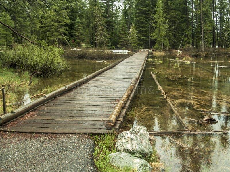 Puente de madera cerca de Jenny Lake en el parque nacional magnífico de Teton fotos de archivo