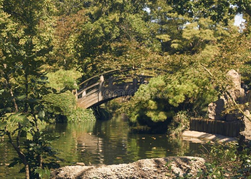 Puente de madera curvado fotos de archivo