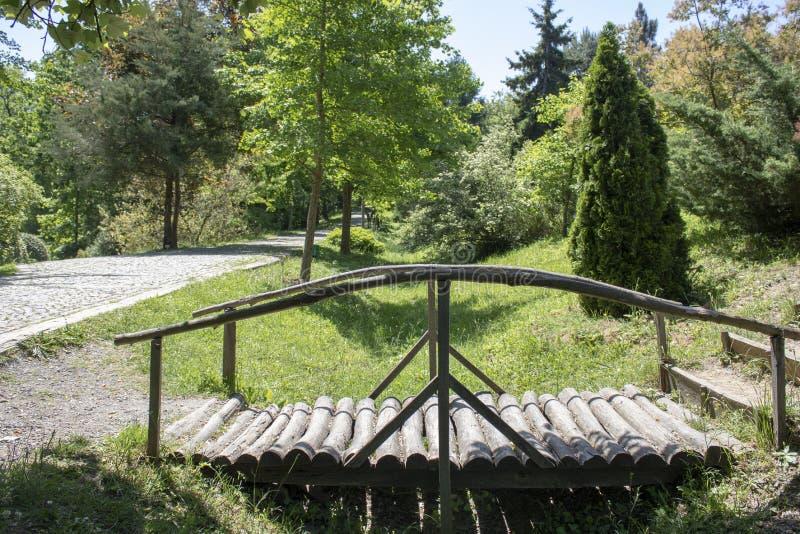 Puente de madera del borde de la carretera del bosque fotografía de archivo