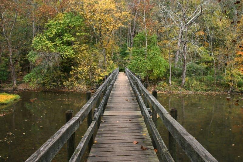 Puente de madera del pie fotografía de archivo libre de regalías