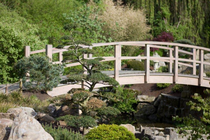 Puente de madera en el jardín japonés fotos de archivo