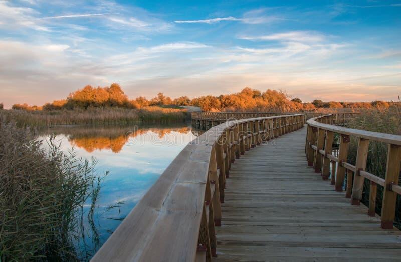 Puente de madera en el lago imágenes de archivo libres de regalías