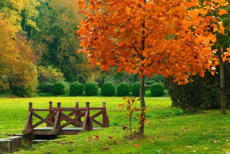 Puente de madera en el parque del otoño imagenes de archivo