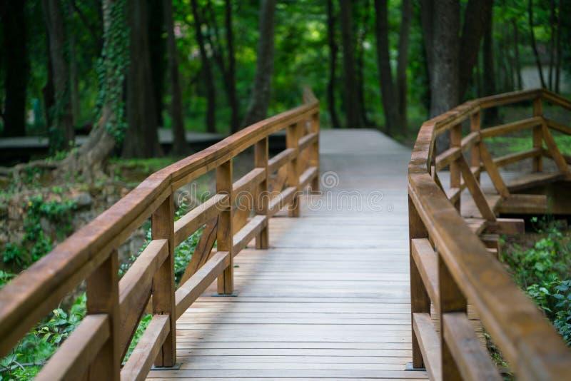 Puente de madera en el parque nacional de Krka imagenes de archivo