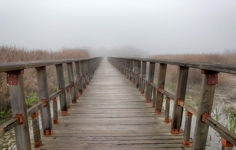 Puente de madera en naturaleza en un día de niebla imagen de archivo libre de regalías