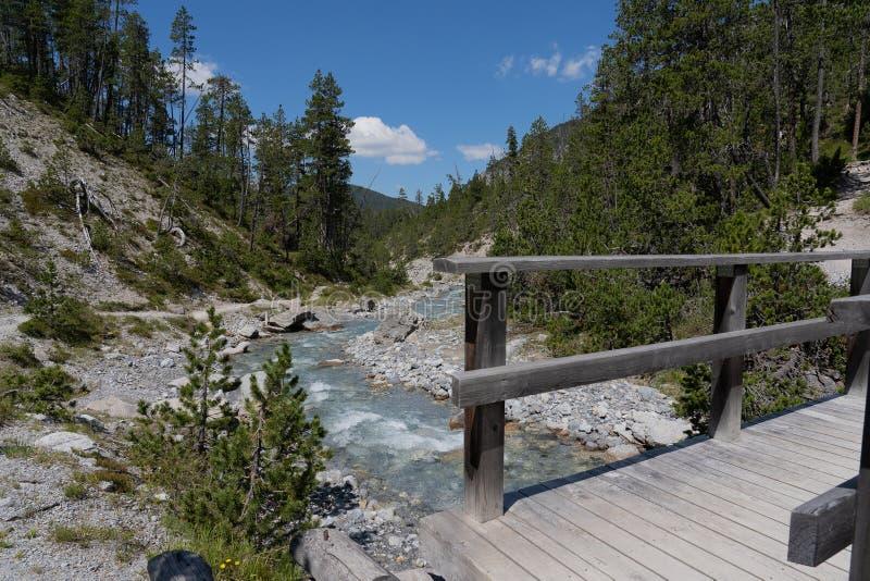 Puente de madera en un romántico parque natural salvaje en la parte e de Engadin en Suiza imagen de archivo