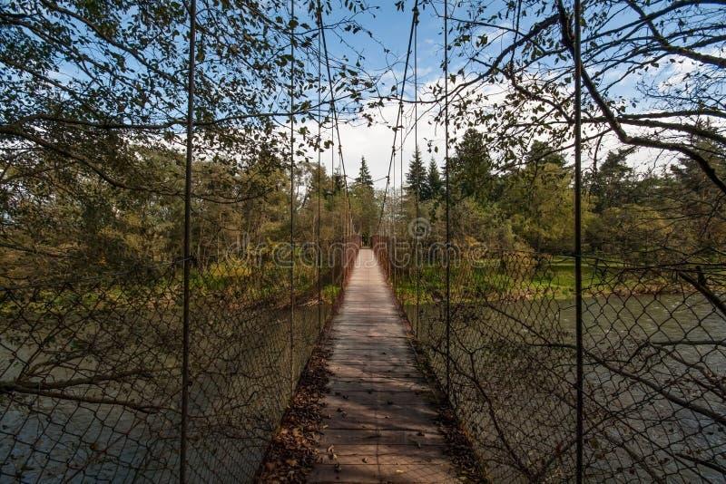 Puente de madera de la vieja ejecución sobre el río Vah fotos de archivo
