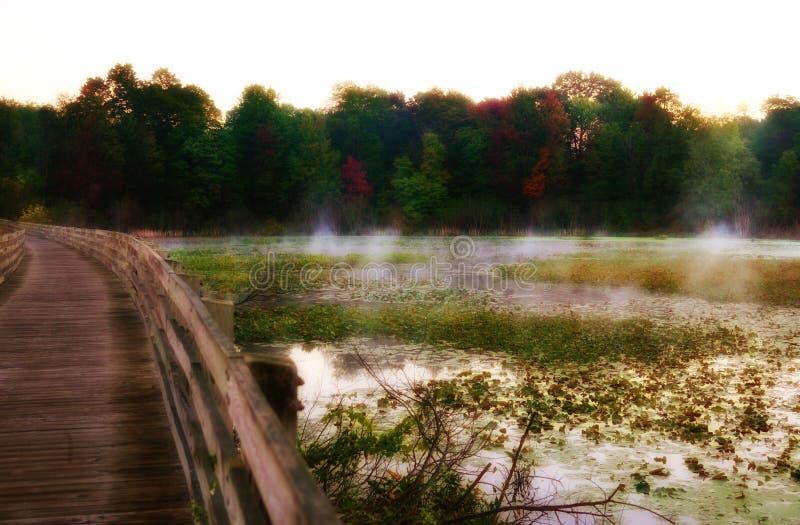 Puente de madera a lo largo del lago místico con los lirios y la niebla imágenes de archivo libres de regalías