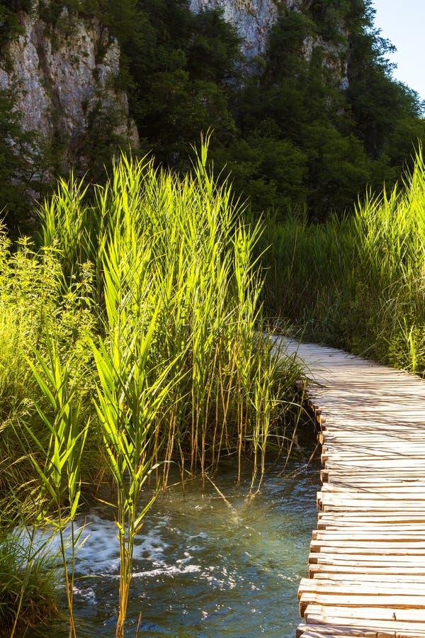 Puente de madera sobre el lago en el parque nacional de Plitvice Fondo natural de la turquesa verde hermosa fotografía de archivo libre de regalías