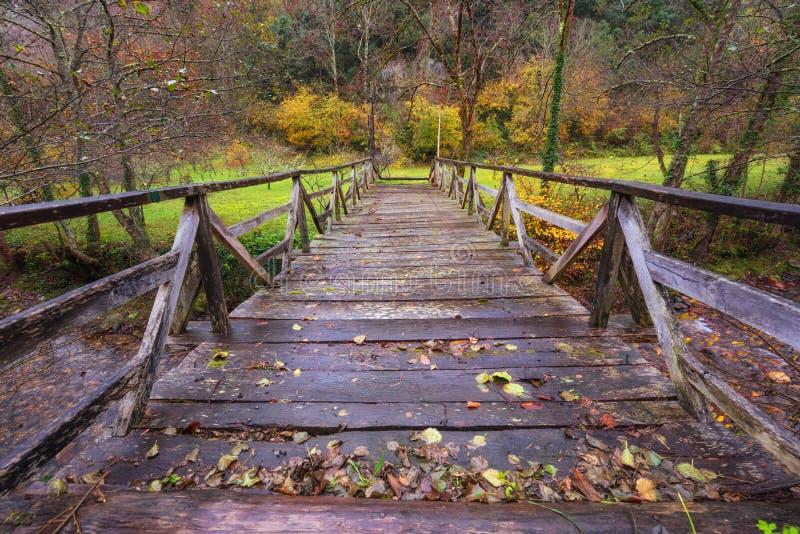 Puente de madera sobre el río en el parque natural de Somiedo, Asturias, España imagen de archivo libre de regalías