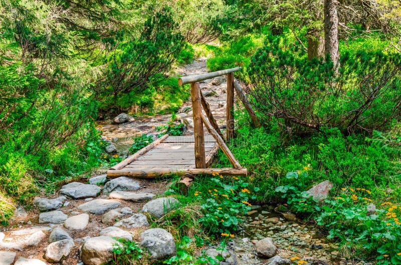 Puente de madera sobre una corriente en el bosque imagenes de archivo