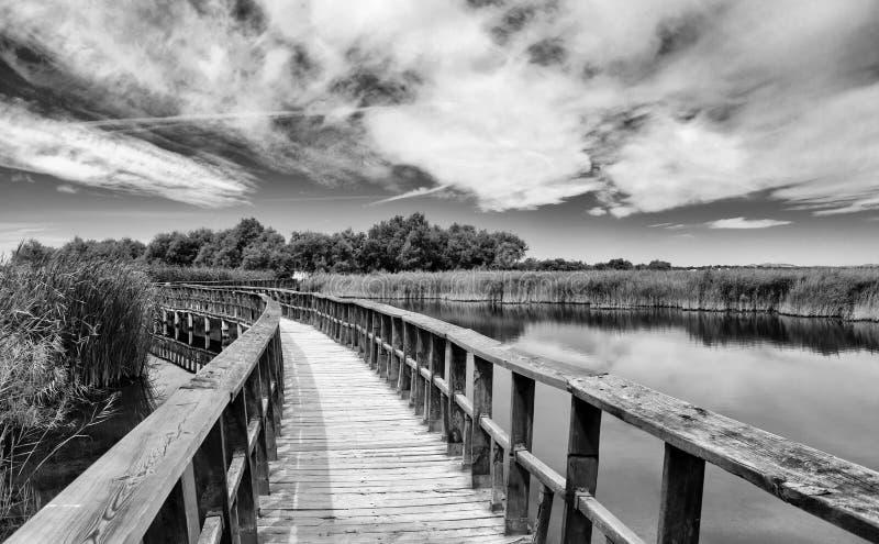 Puente de madera sobre una laguna, blanco y negro imagenes de archivo