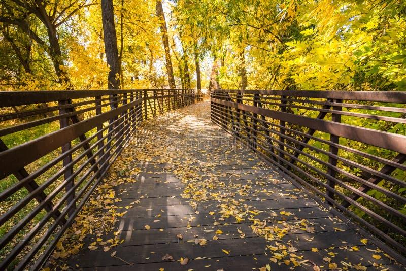 Puente de madera a través de Autumn Woods imágenes de archivo libres de regalías