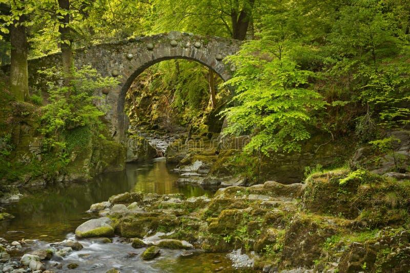 Puente de piedra sobre un río en Irlanda del Norte imagenes de archivo