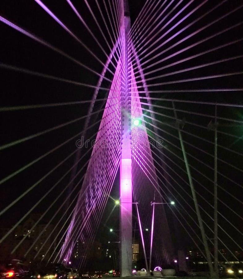 Puente de Seri Wawasan Putrajaya fotos de archivo