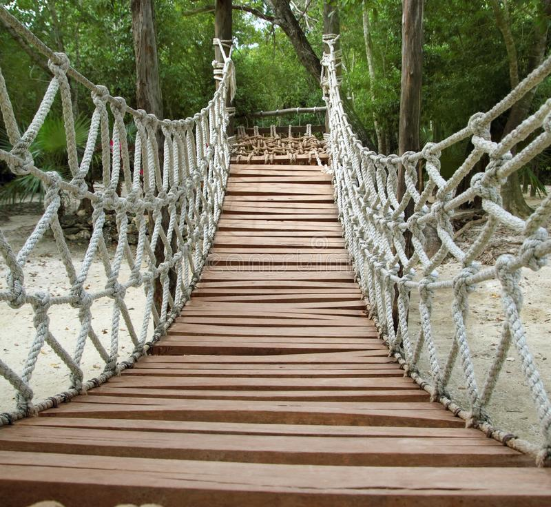 Puente de suspensión de madera de la selva de la cuerda de la aventura imagen de archivo