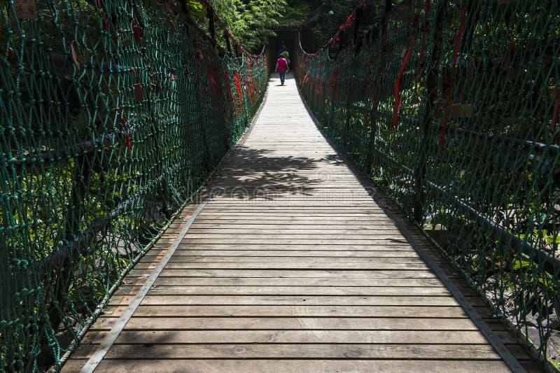 Puente de suspensión de madera de la selva de la cuerda de la aventura fotografía de archivo libre de regalías
