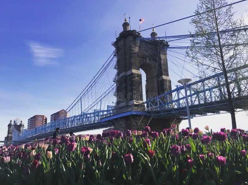 Puente de suspensión de Juan A Puente de suspensión de Roebling foto de archivo