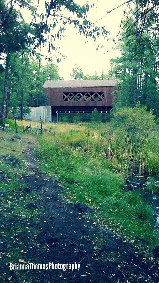 Puente del abandono foto de archivo