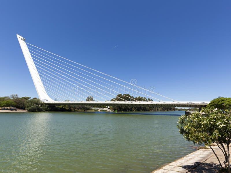 Puente del Alamillo, Seville stock images