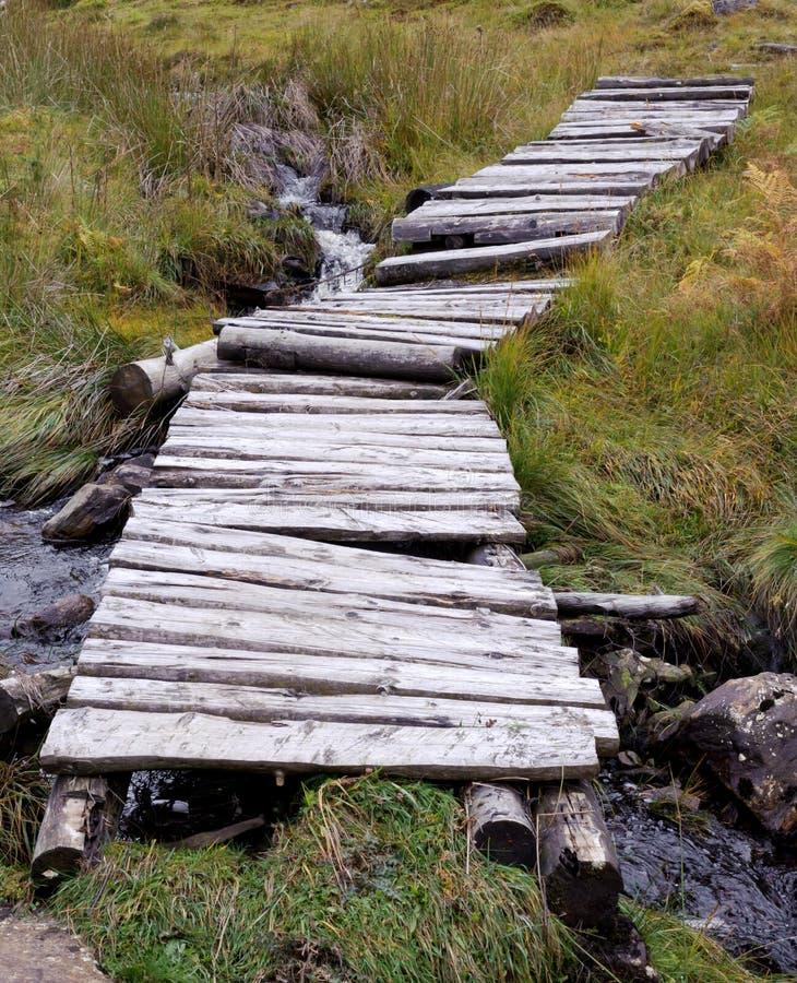 Puente del arbolado imagenes de archivo