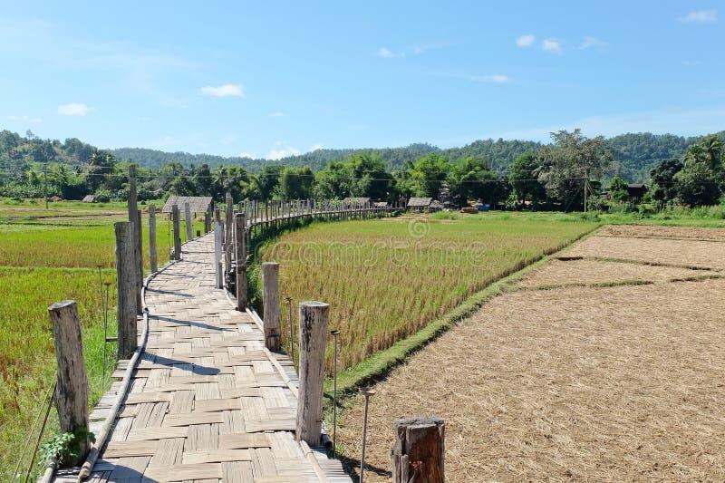 Puente del bambú de Zu Tong Pae fotografía de archivo libre de regalías