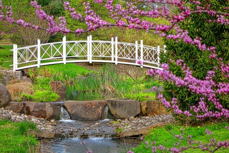 Puente del Ornamental de los jardines botánicos del parque de Sayen fotos de archivo