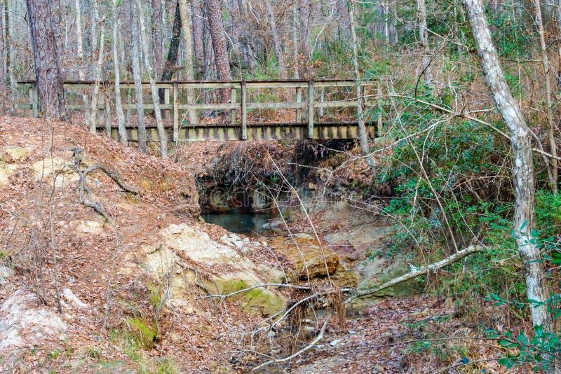 Puente del pie en las primaveras de Boykin fotografía de archivo
