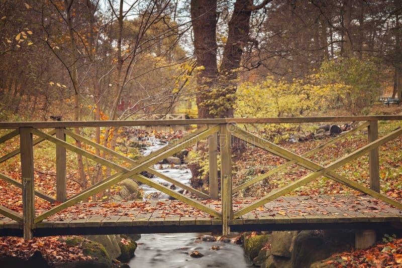 Puente del pie del parque imágenes de archivo libres de regalías