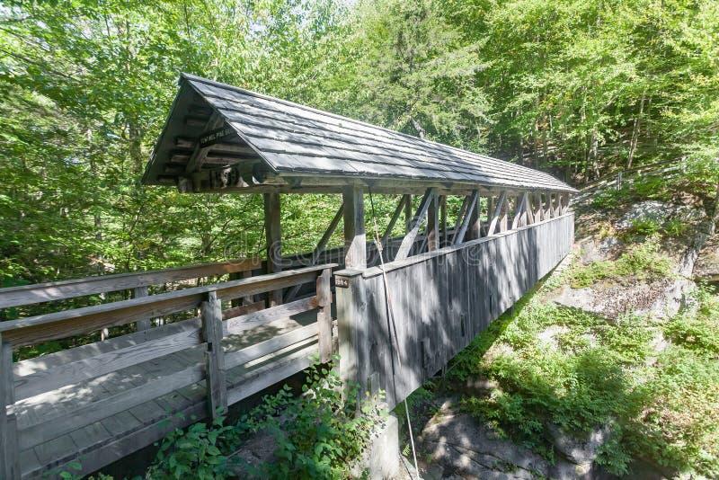Puente del pino del centinela foto de archivo libre de regalías