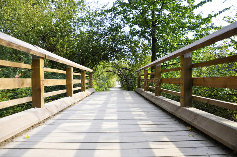 Puente en camino de bosque. foto de archivo