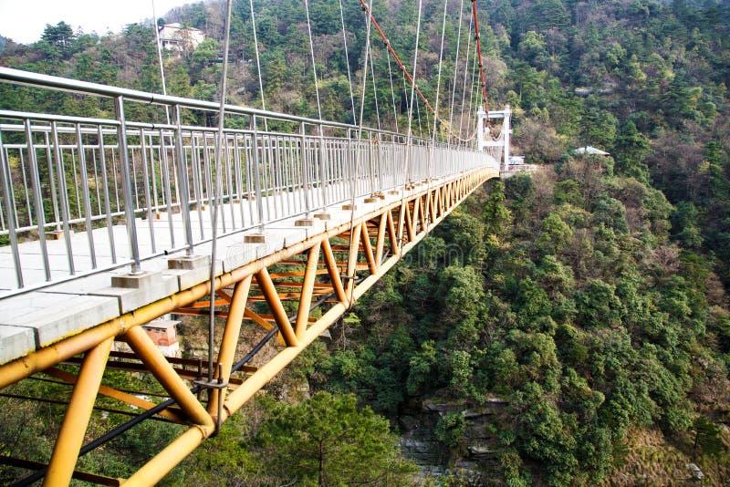 puente en el bosque imagenes de archivo