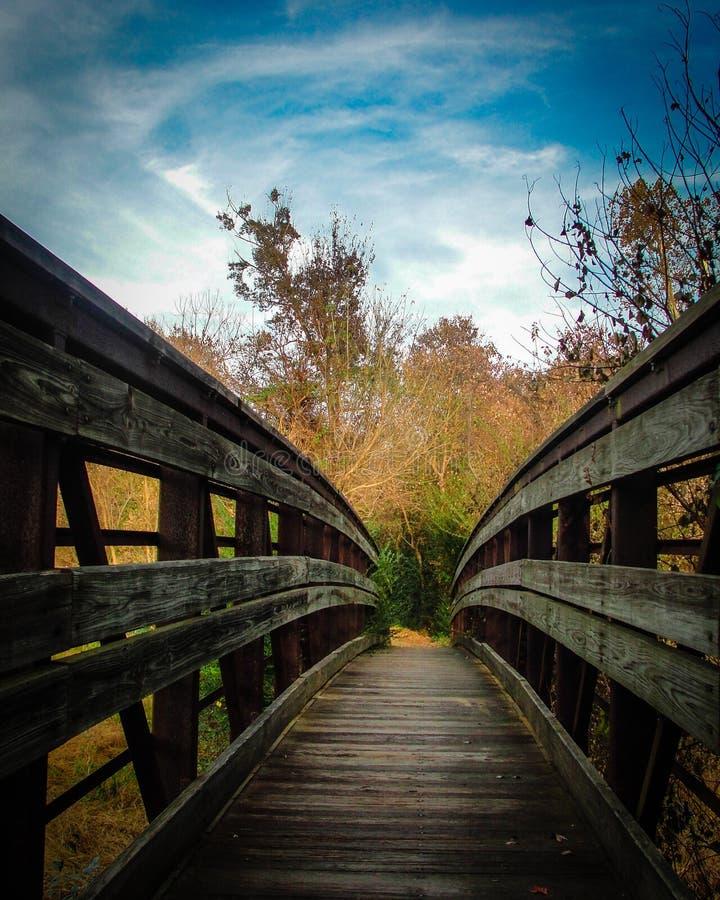 Puente en el bosque imagen de archivo libre de regalías